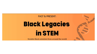 read more: Black History Month 2020 - Africans in STEM